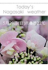 長崎市お天気・長崎紫陽花まつり